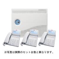 岩通ビジネスホン LEVANCIO-S 標準電話機4台セット